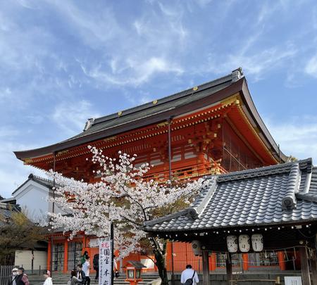 八坂神社の写真・動画_image_420102
