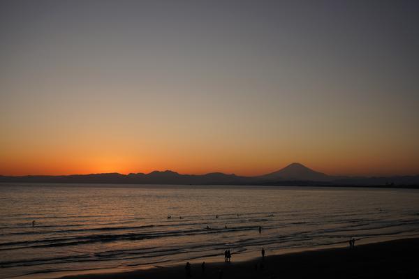 新江ノ島水族館の写真・動画_image_429447