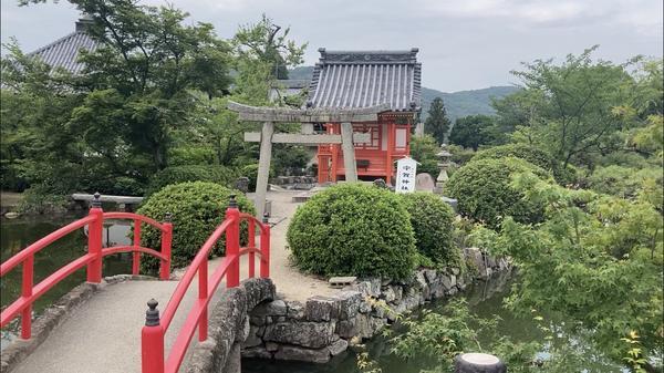 吉備津神社の写真・動画_image_440057