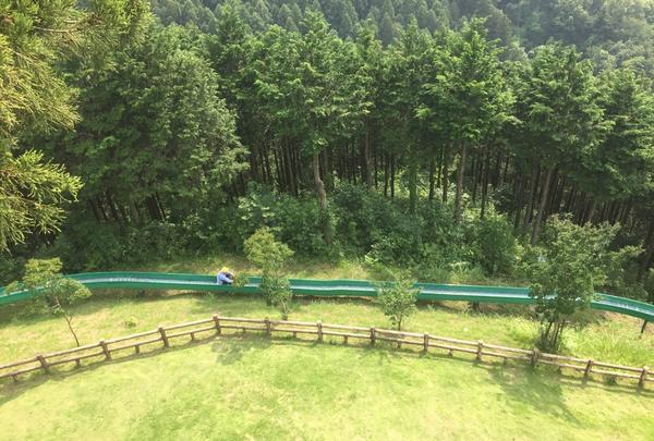 仙元山見晴らしの丘公園の写真・動画_image_83830