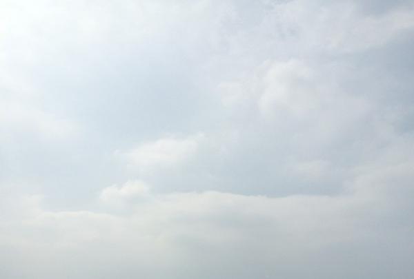 仙元山見晴らしの丘公園の写真・動画_image_84715