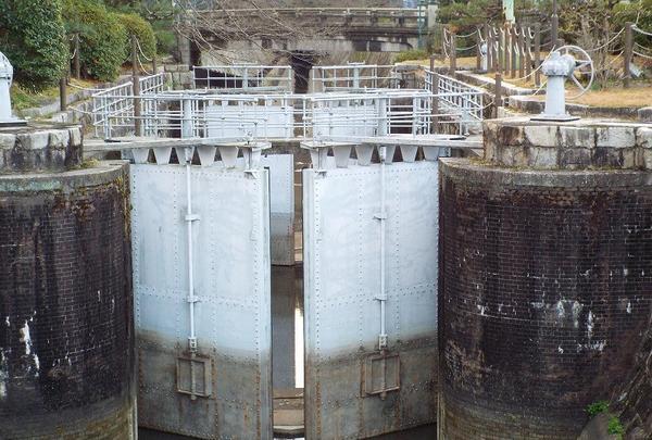 琵琶湖疏水の写真・動画_image_87302