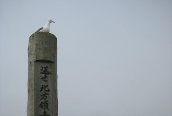 納沙布岬の写真・動画_image_90049