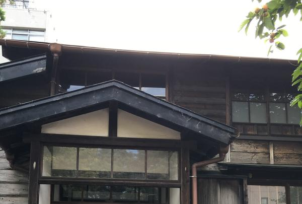 山本記念公園の写真・動画_image_94364