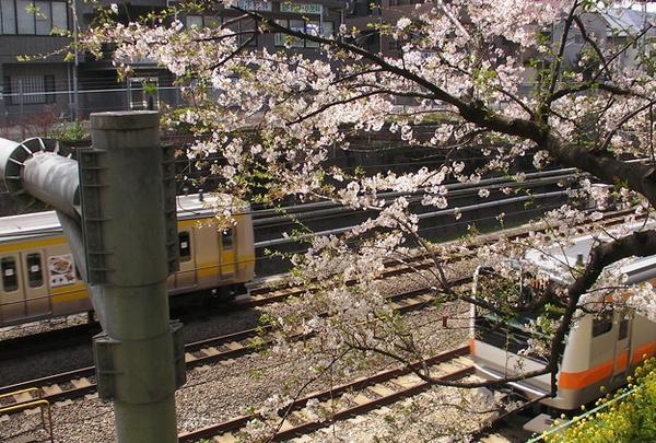 東中野駅周辺