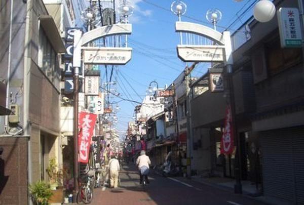 京かい道筋商店街の写真・動画_image_166683