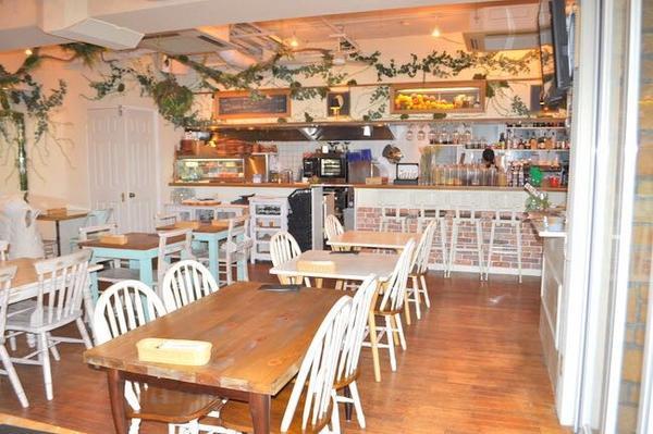 Mother earth Cafeの写真・動画_image_227860