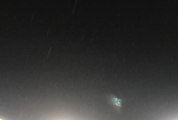 阪神甲子園球場の写真・動画_image_240438