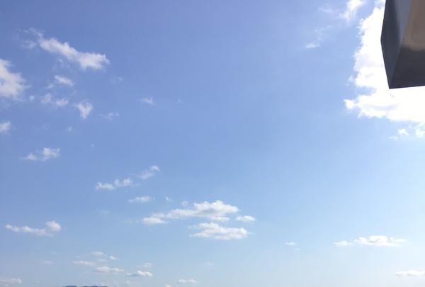 唐津城の写真・動画_image_281332