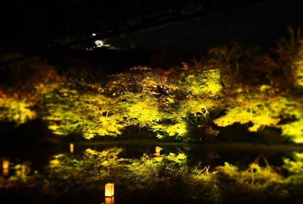 御船山楽園の写真・動画_image_284729
