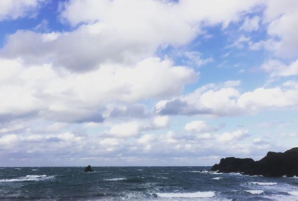越前松島水族館の写真・動画_image_318754