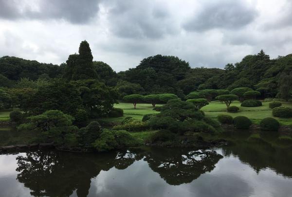 新宿御苑の写真・動画_image_321504