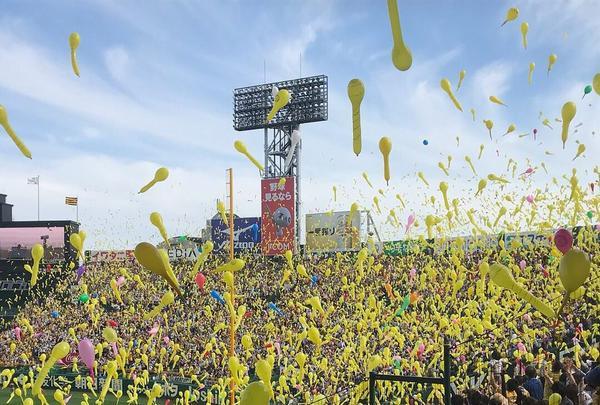 阪神甲子園球場の写真・動画_image_322309