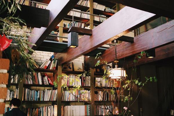 Cafe Bibliotic Helloの写真・動画_image_325602