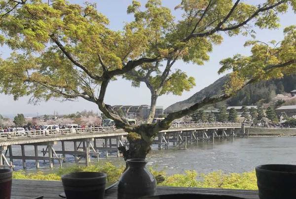 嵐山よしむらの写真・動画_image_326930