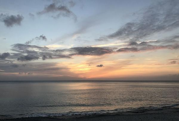 奄美市大浜海浜公園の写真・動画_image_329853