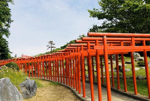 高山稲荷神社の写真・動画_image_333304