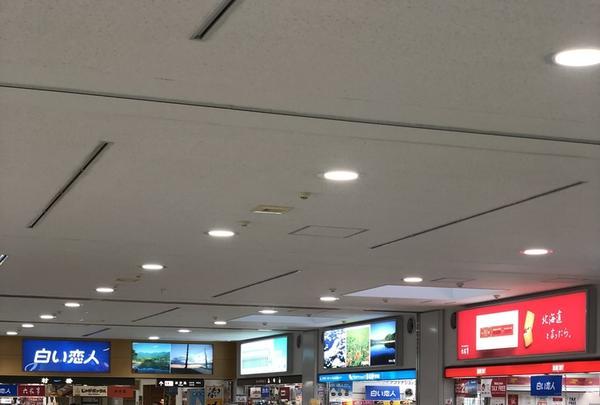 女満別空港の写真・動画_image_339328