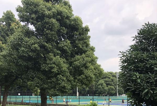 智光山公園(バス)の写真・動画_image_348031