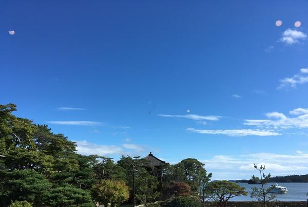 松華堂菓子店の写真・動画_image_431822