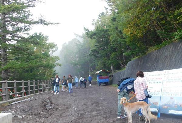 富士山5ごうめの写真・動画_image_486794
