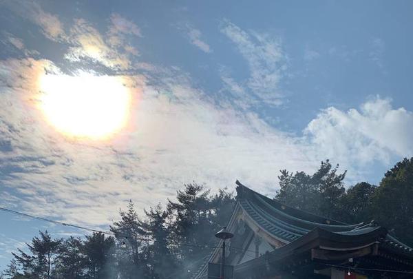 東光寺(門戸厄神)の写真・動画_image_489526