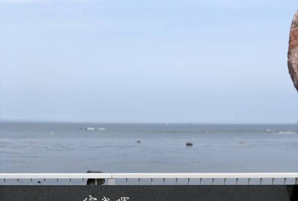宗谷岬の写真・動画_image_563626