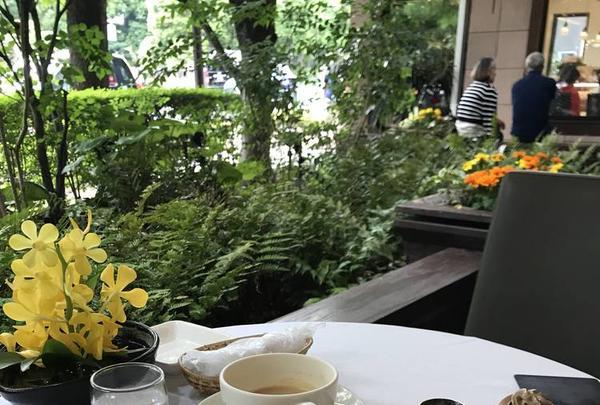 ウエスト青山ガーデン(WEST AOYAMA GARDEN)の写真・動画_image_577765