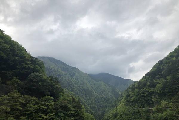 寸又峡の写真・動画_image_588820