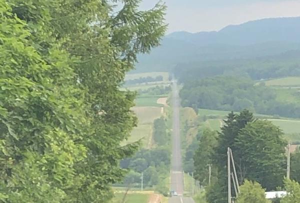 ジェットコースターの路の写真・動画_image_608875