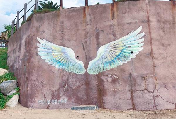 パームビーチ 天使の羽の写真・動画_image_642699