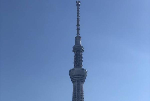 東京スカイツリーの写真・動画_image_707031