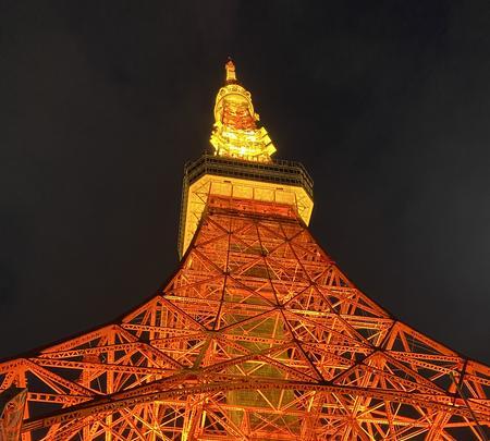 東京タワーの写真・動画_image_734126