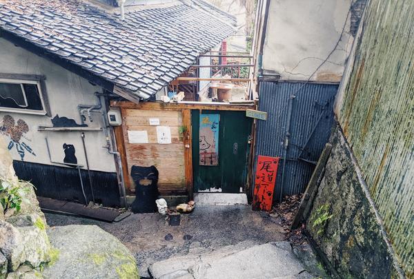 猫の細道の写真・動画_image_734932
