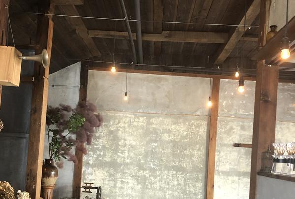 Hummingbird coffeeの写真・動画_image_765035