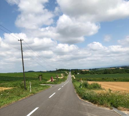 ジェットコースターの路の写真・動画_image_782966