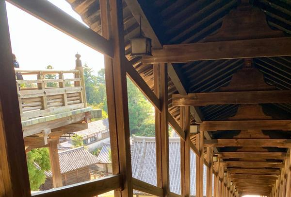 東大寺二月堂の写真・動画_image_788868
