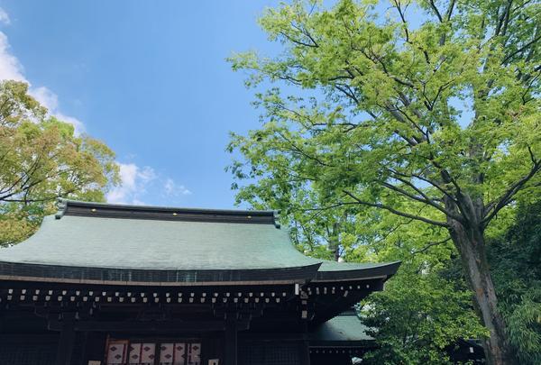氷川神社の写真・動画_image_915954