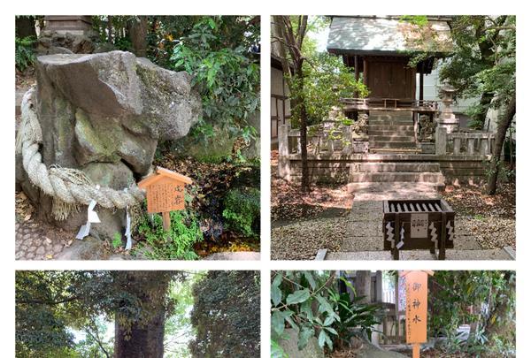 氷川神社の写真・動画_image_915958