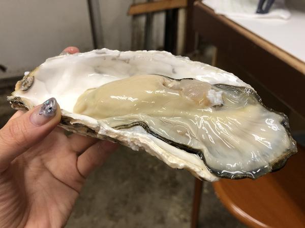 早速生牡蠣を。