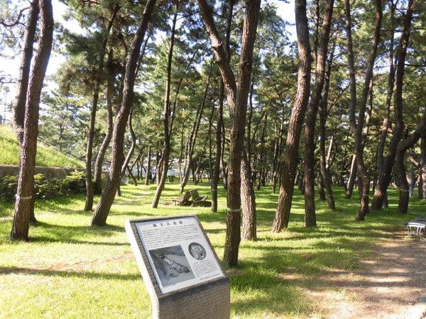 舞子浜遺跡