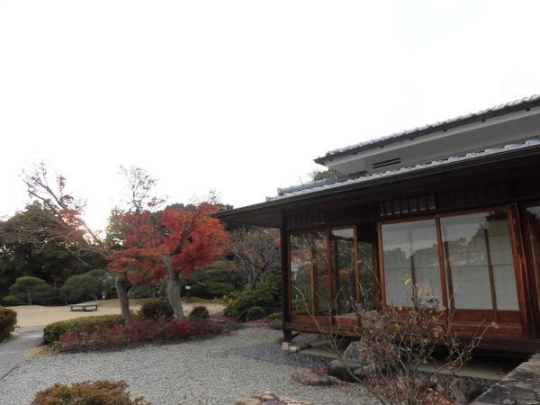 和室と和庭園