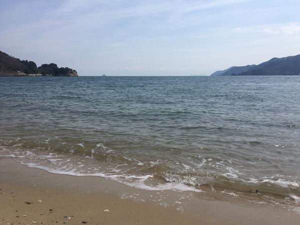 きれいで穏やかな海