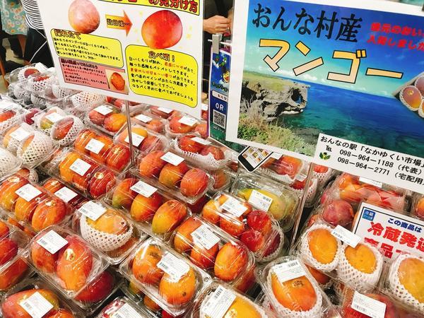 めちゃうまマンゴーの直売所