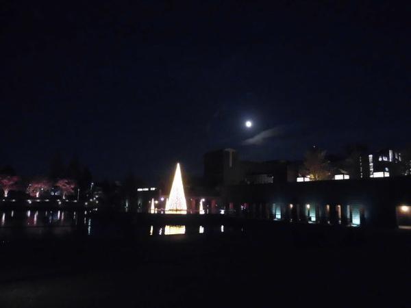 月の灯りも美しく