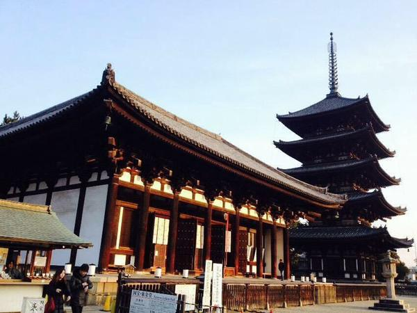 五重塔と興福寺✨