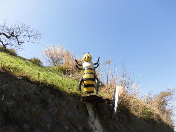 ミツバチ博物館