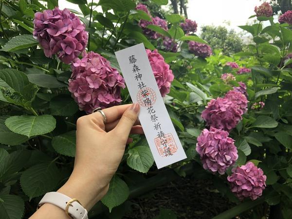 紫陽花と共に♡