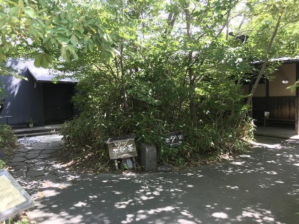川崎のど真ん中の非日常。