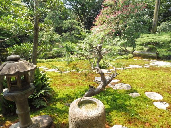 座敷から庭園を眺める